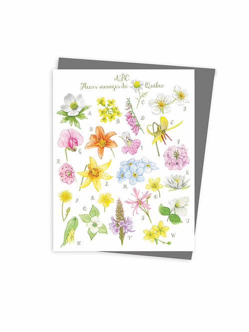ABC fleurs sauvages du Québec