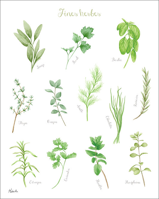 Fines Herbes, Affiche