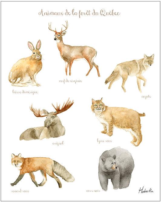 Forest animals art print, wild animal poster made in Quebec Canada, Affiche animaux de la forêt du Québec,, Hobeika Art