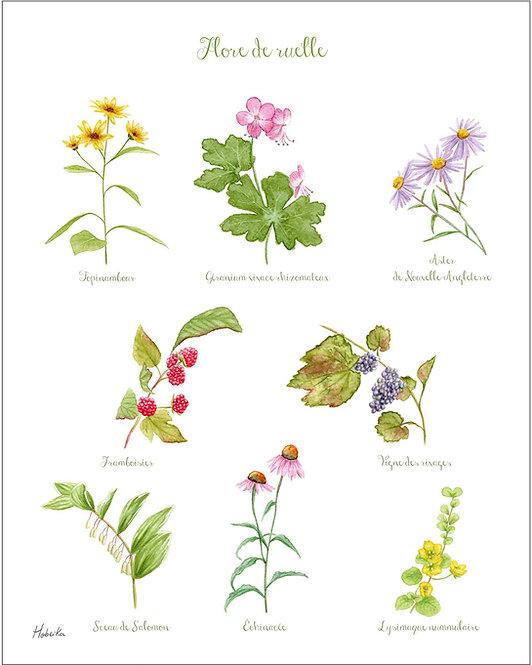 Alley flora