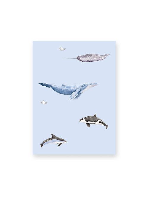 Cahier de notes Baleines