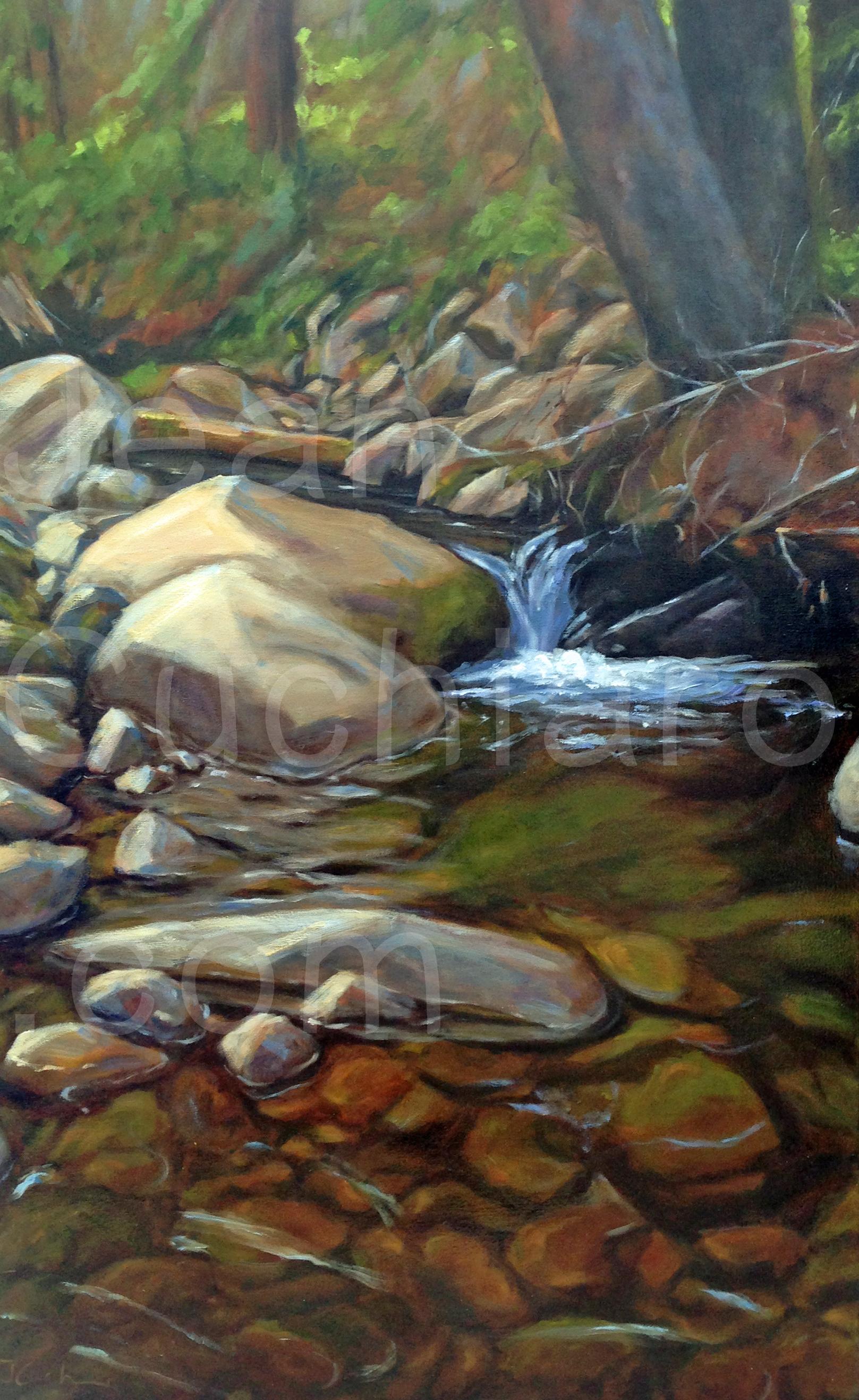 """""""Quandary Creek"""""""