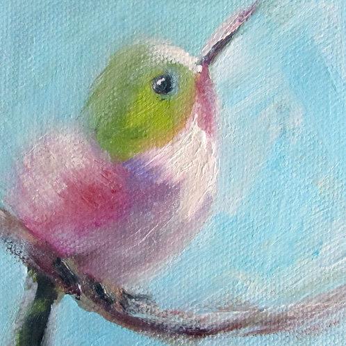 """Baby Hummingbird"" 4x4 Print"
