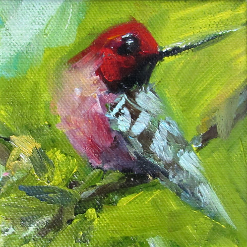 """""""Hummingbird 2"""" 4x4 print"""