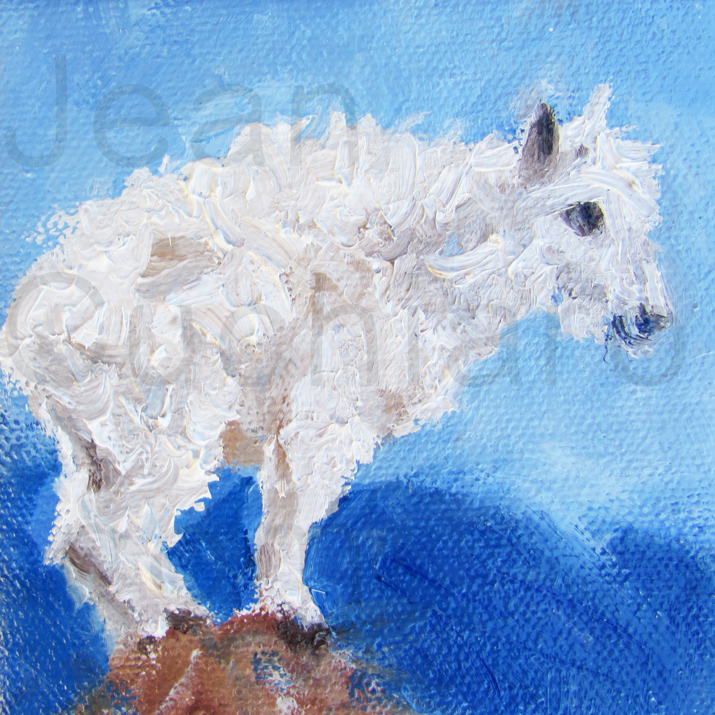 """Baby Mountain Goat 2"""