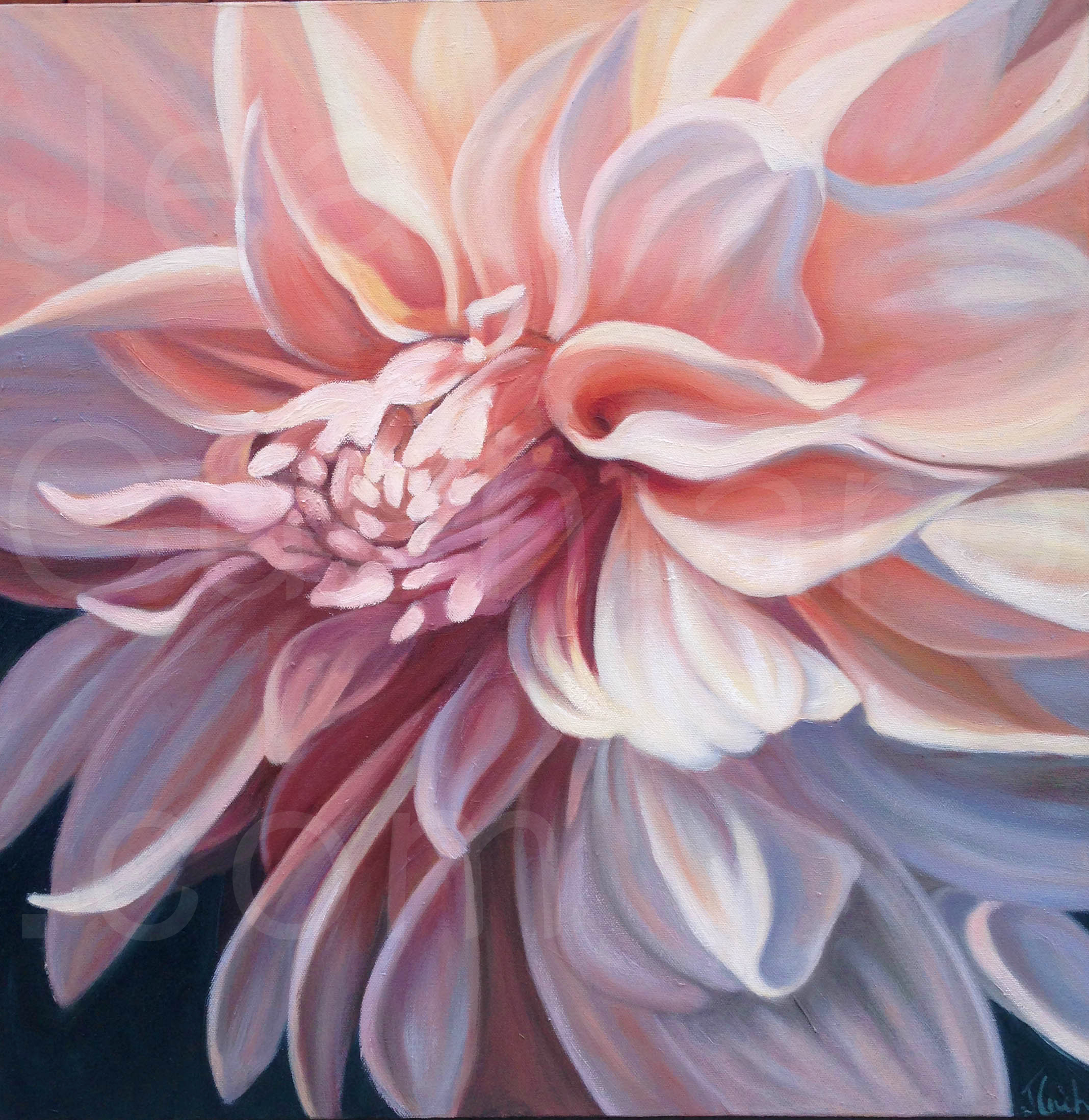 Just Peachy, Oil, 20x20""