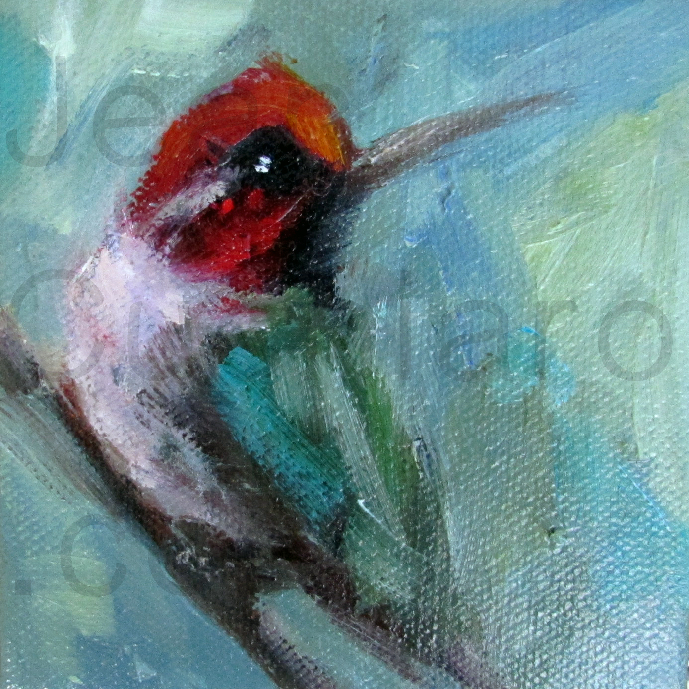 """Teal Hummingbird"""