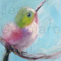 """Baby Hummingbird"""