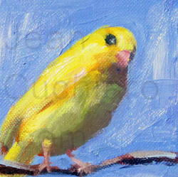 """""""Yellow Parakeet"""""""