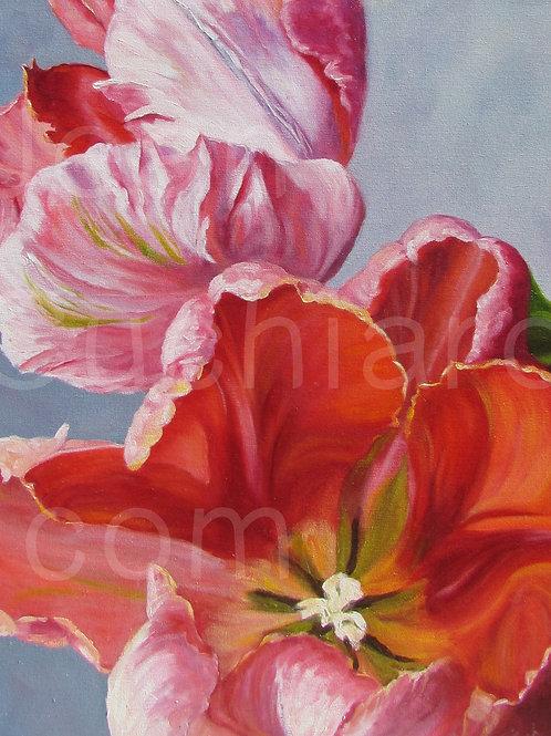 """Spring Fever""  8x10 Print"