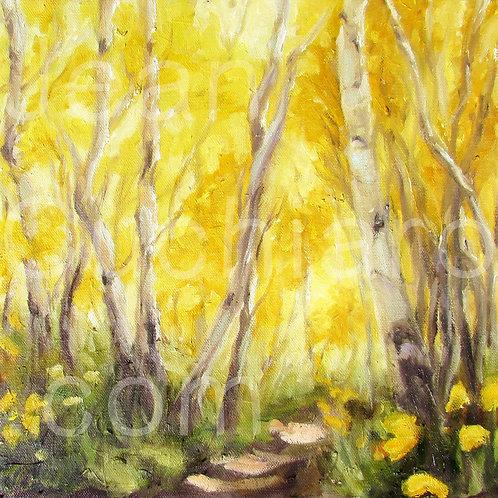"""Sunlit Path"" 8x8 Print"