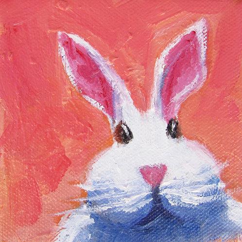 Fuzzy Bunny in Orange