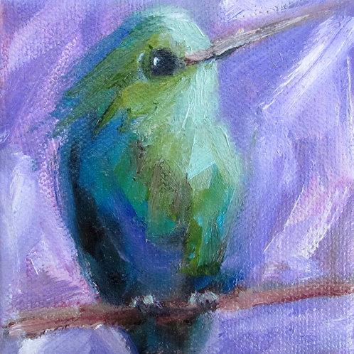 Hummingbird in Purple