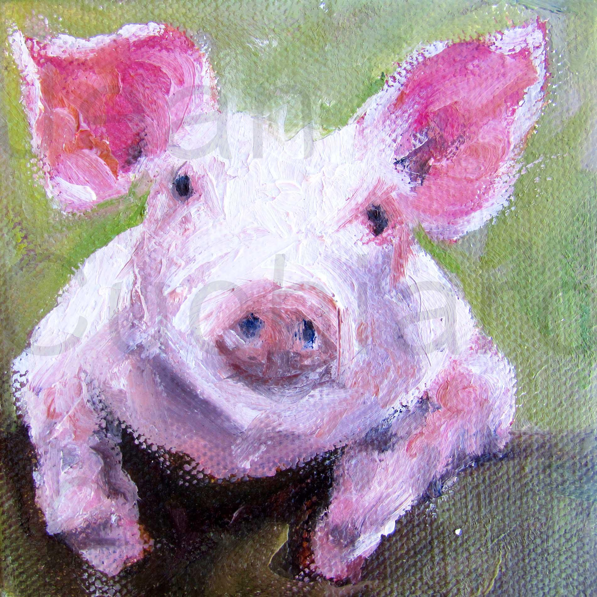 """""""Pig"""""""