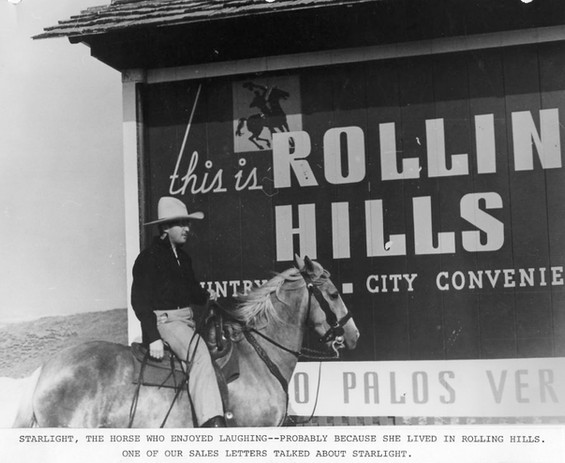 194X RollingHills Sign and Starlight.jpg