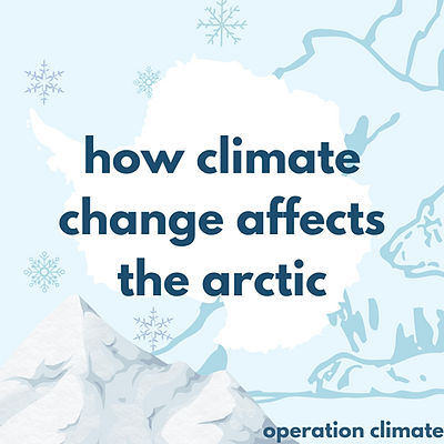 How Climate Change Affects the Arctic