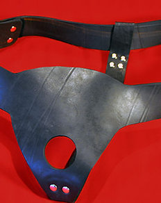 Original Custom Harness