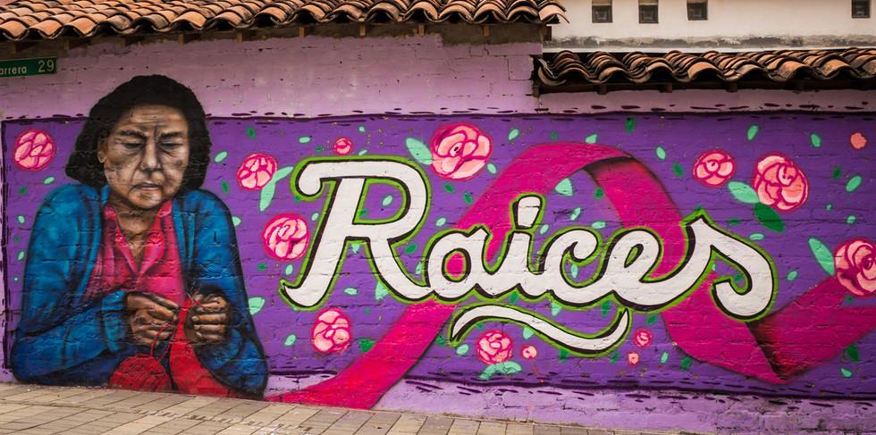 Mural Raíces barrio Buenos Aires