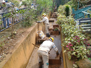 Como parte de la estrategia de Ecociudad, Medellín suma esfuerzos para enfrentar el cambio climático