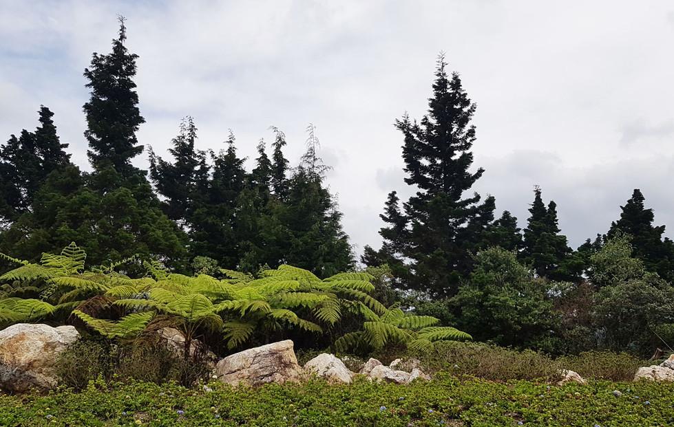 Parque Arví