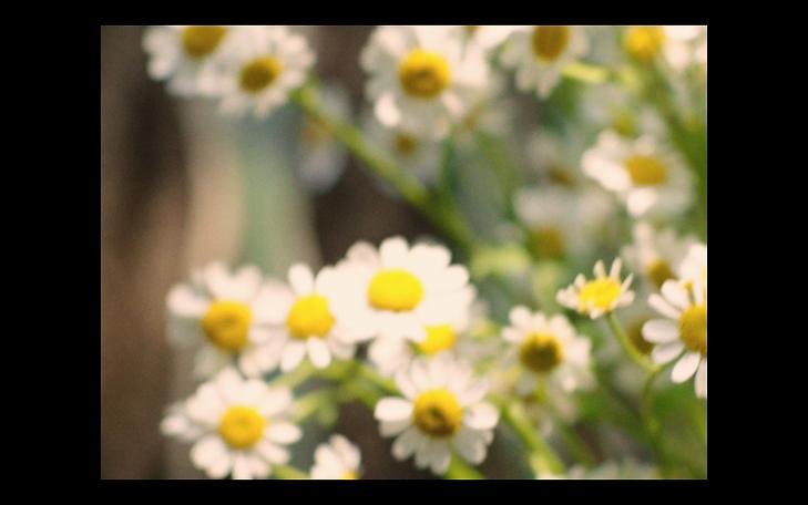 Screen Shot 2021-05-18 at 9.38.31 PM.png