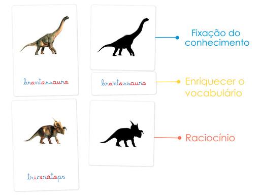 Flashcards - Nomes dos Dinossauros e Sombras