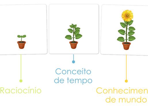 Flashcards - Ciclo de Vida do Girassol