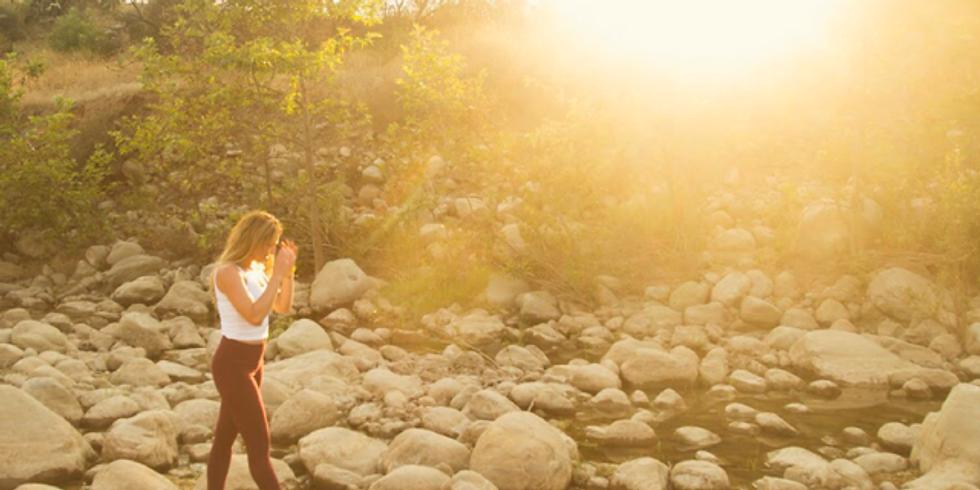 Into the Wild Sisterhood: February