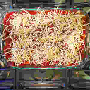 Vegan Gluten & Dairy Free Lasagna