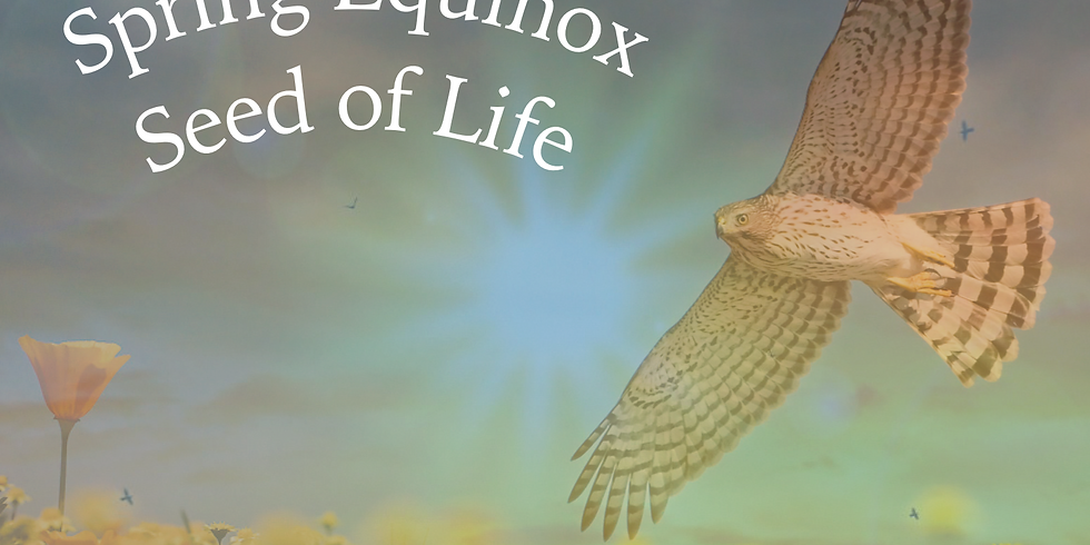 Spring Equinox- Seed of Life