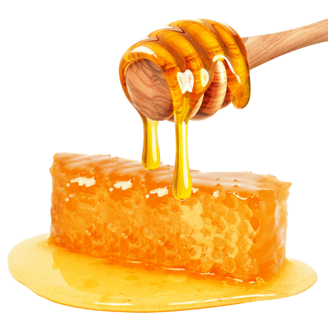 Bee Thankful for Honey