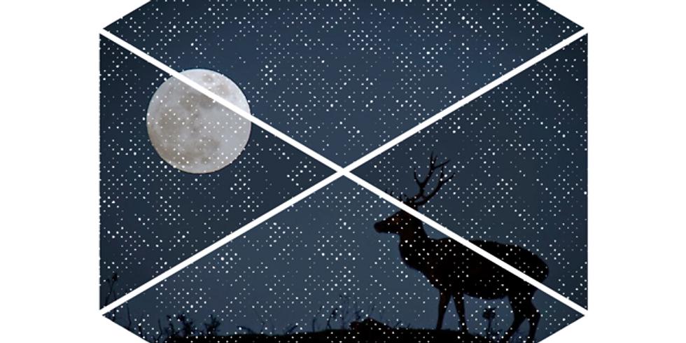 July's Full Moon Breathwork + Reiki Infusion