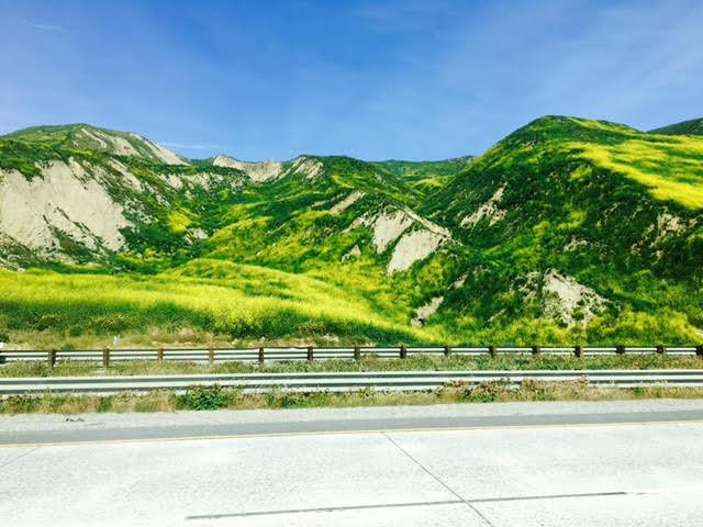Ventura's Spring Break: Day Tripping