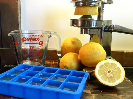 Wellness Wednesday- Iced Lemons