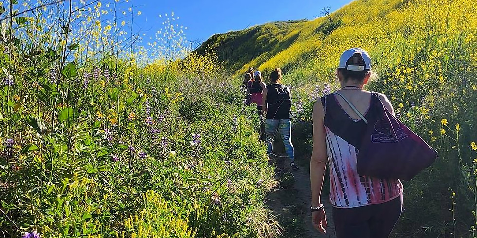Connected to Nature: Hike - Yoga - Meditate