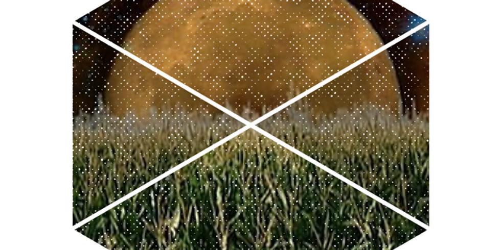 September Full Moon Breathwork + Reiki Infusion