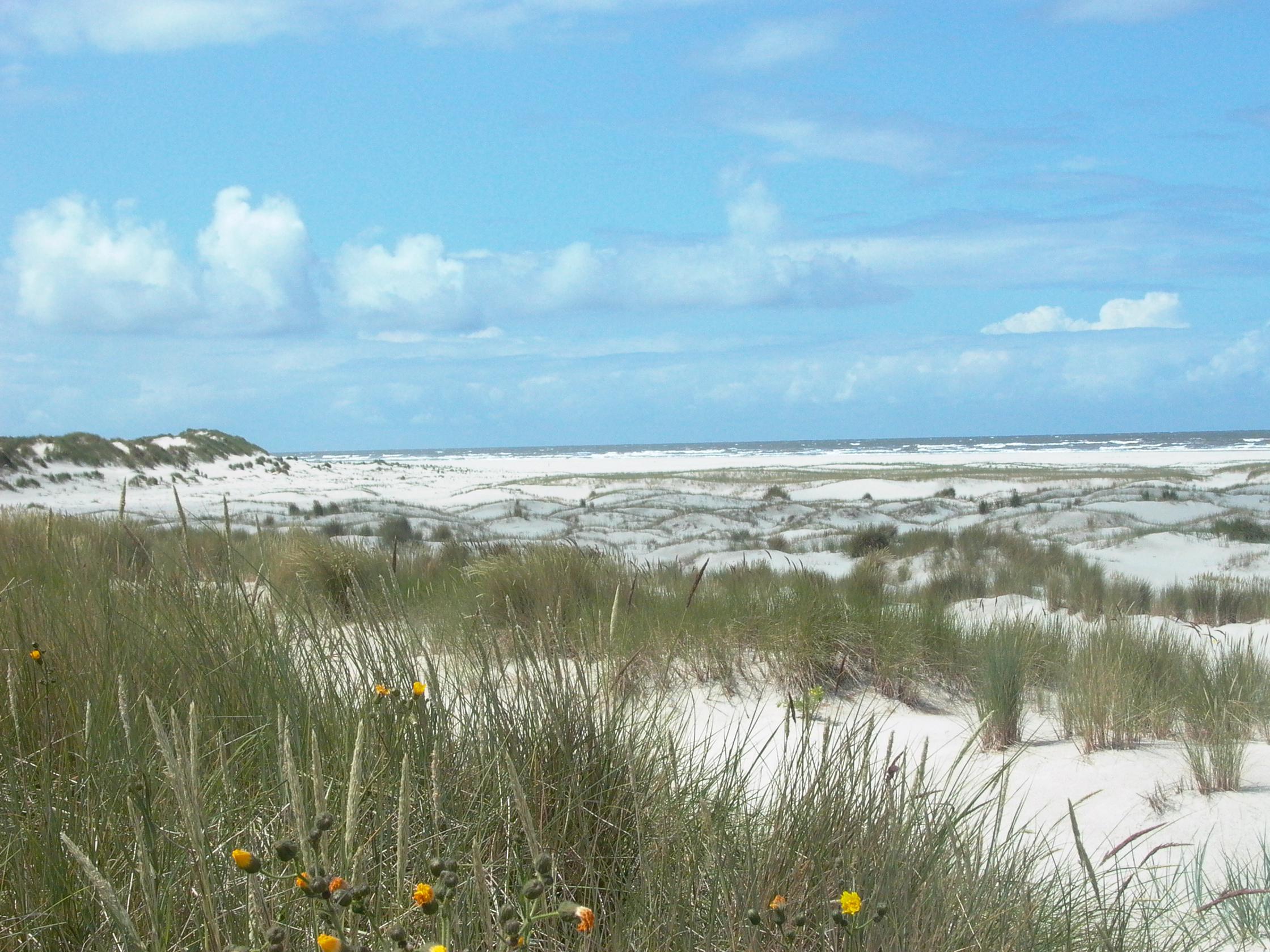 Ostfriesische Insel Langeoog