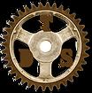 logo TDS.png