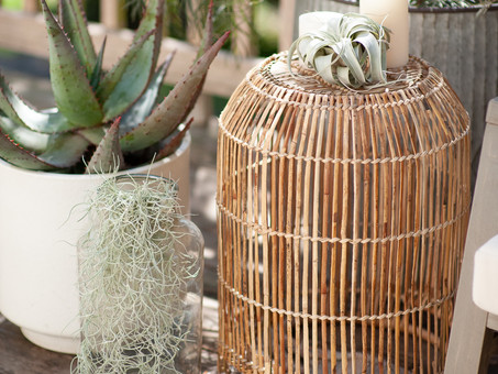 Top 6 Outdoor Styling Ideas
