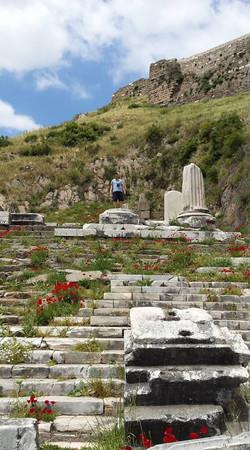 Pergamon30