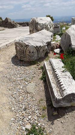Pergamon19