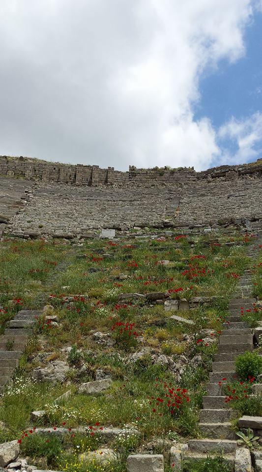 Pergamon20