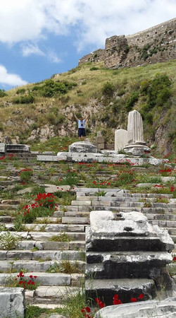 Pergamon31