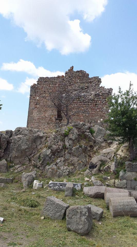 Pergamon7