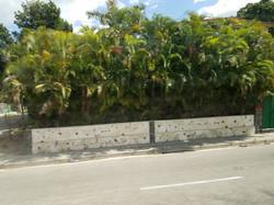 HabanaSuburbsStreet