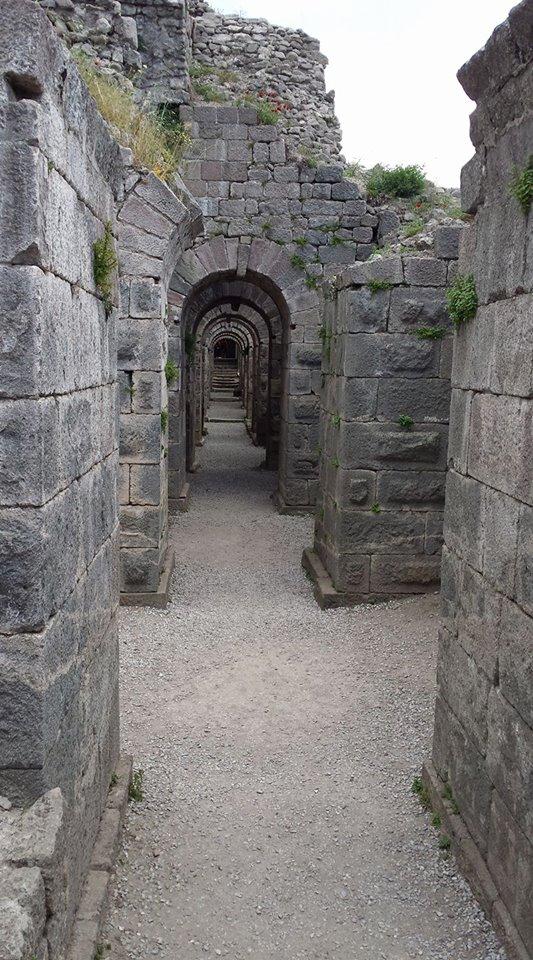 Pergamon15