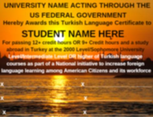 TurkishLanguageCertificate.png