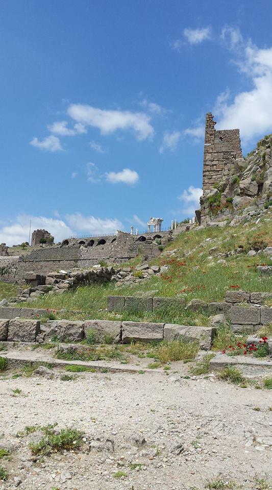 Pergamon33
