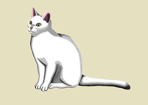 厚塗り課題 猫.jpg
