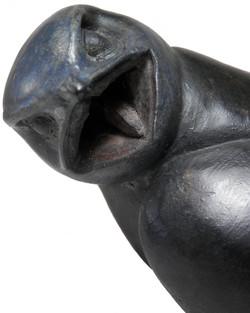 Swift Mouth Detail jpg